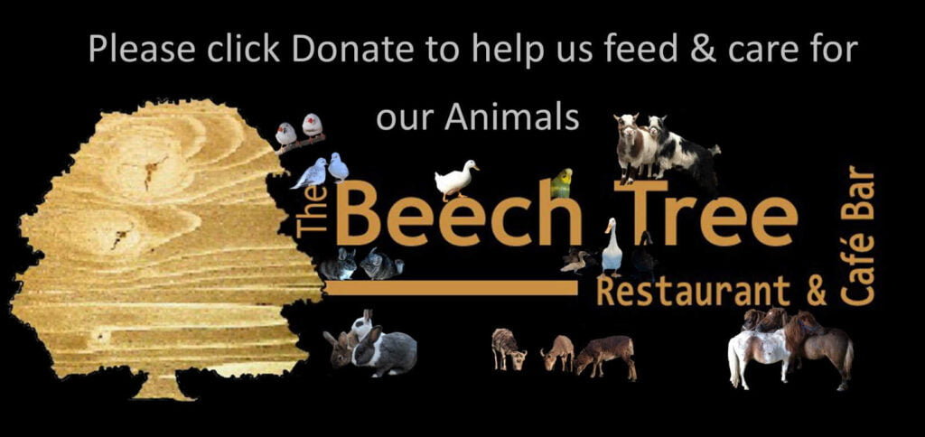 help us feed our animals at the Beech Tree